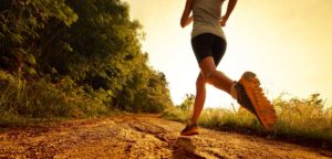 THE HEART & MIND OF EXERCISE & TRAINING